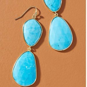 Anthropologie Double Drop Earrings NWT